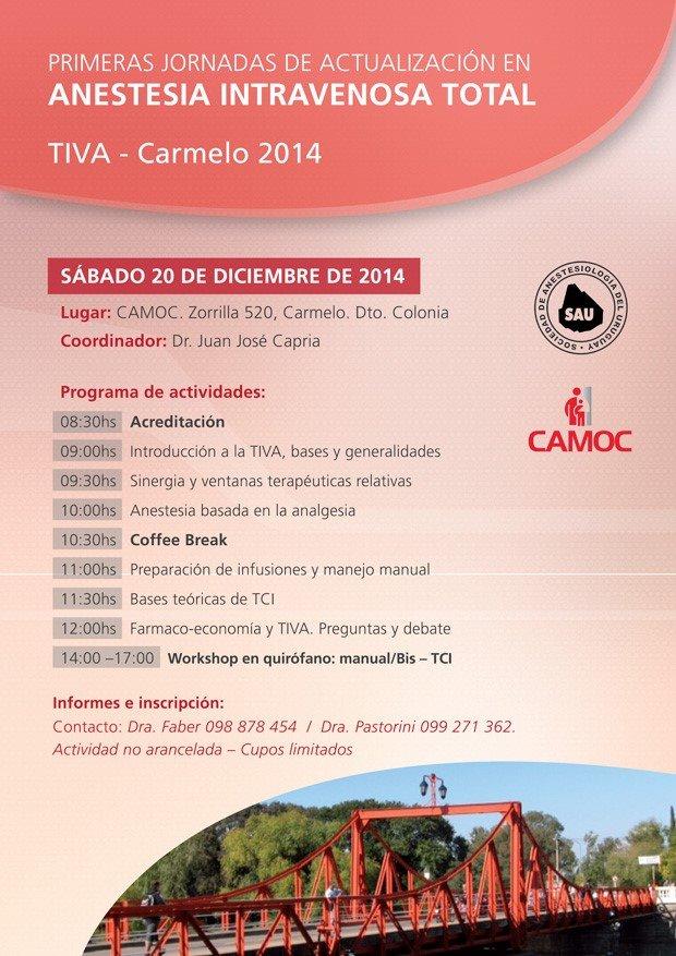 TIVA-Carmelo-afiche